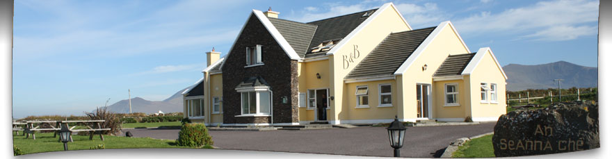 dingle b&b